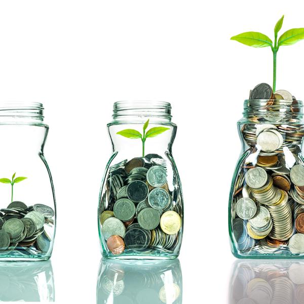 How to Grow your Mutual Fund